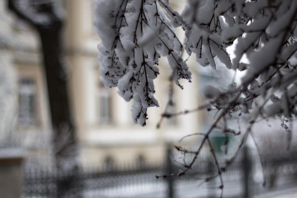 Schneelast vor dem Zaun