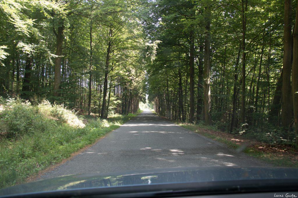 Noch eine Landstraße.