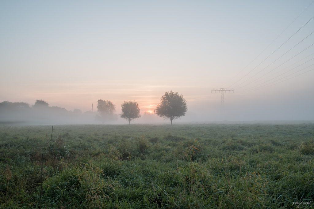 Sonne kommt (v2; HDR)