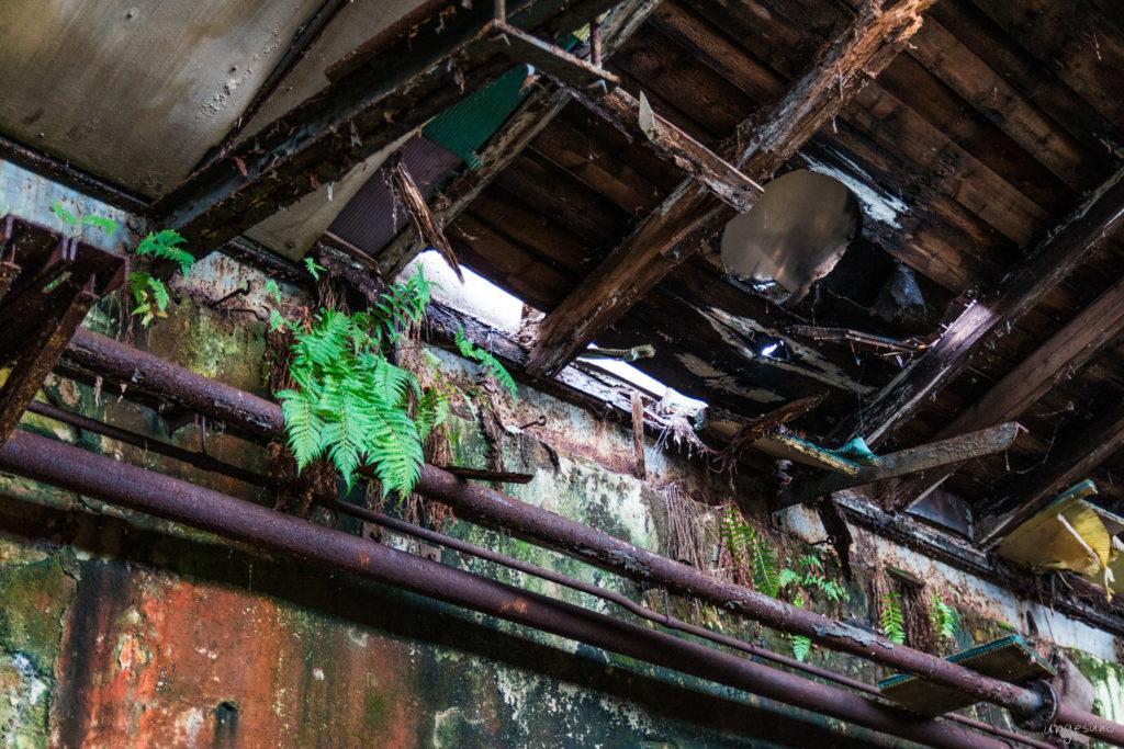 Dachbeschädigung